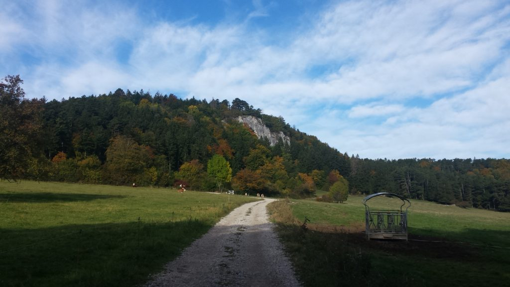 Trail towards the Währingersteig