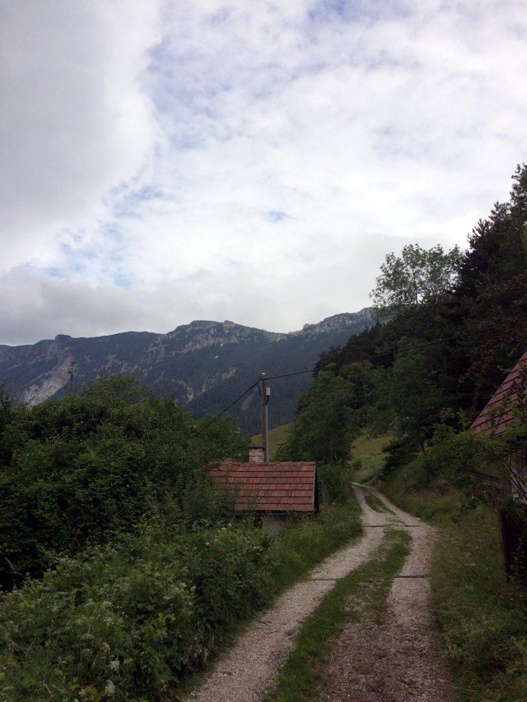 Towards Törlweg