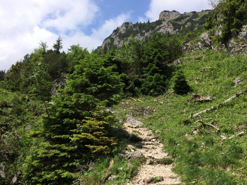 Törlweg towards Rax plateau