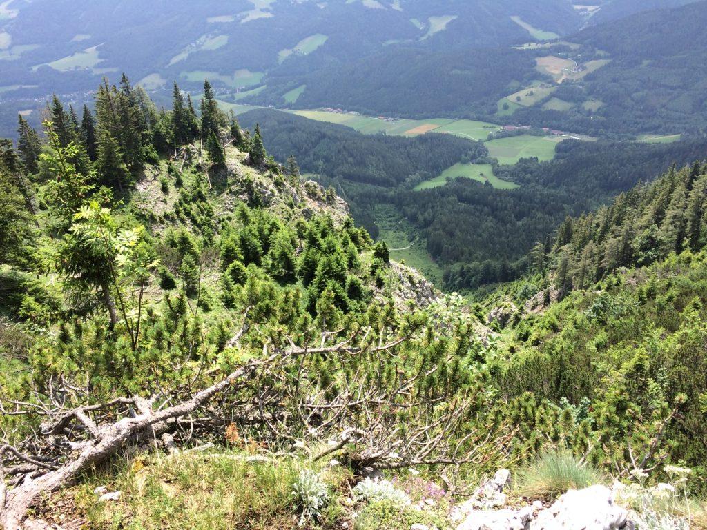 View from Törlweg