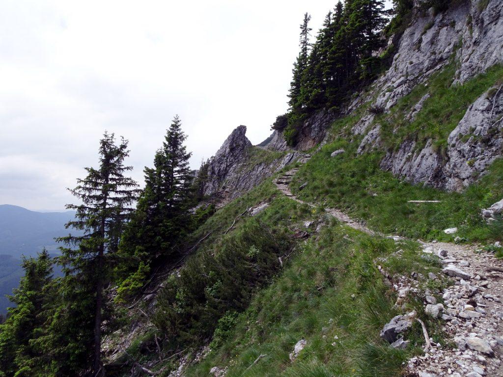 Last meters on Törlweg