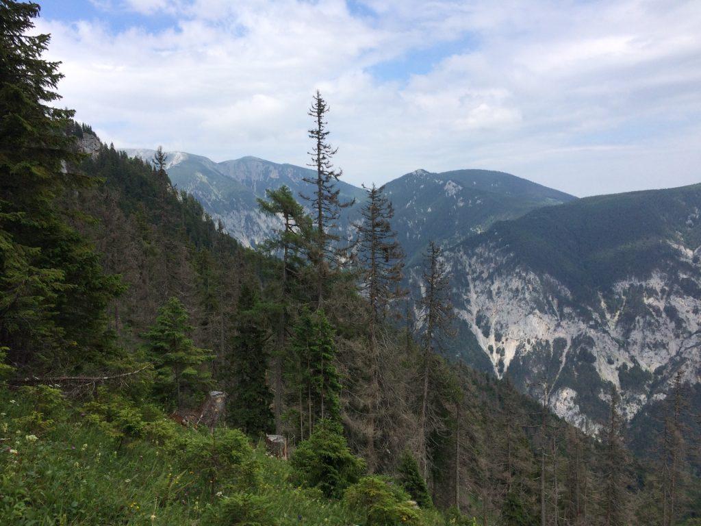 View from Gsolhirnsteig