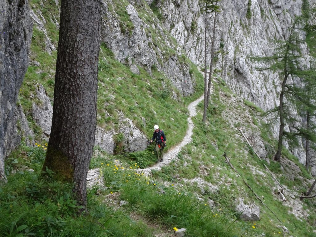 On the trail towards the iron ladder