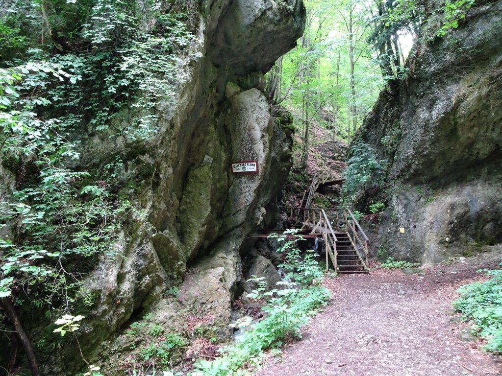 The Steinwandklamm gorge