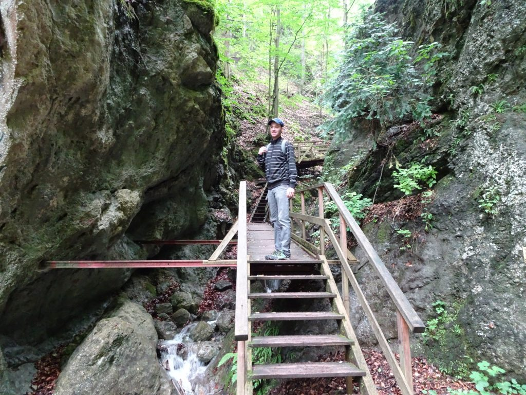Wooden stairs leading through the gorge