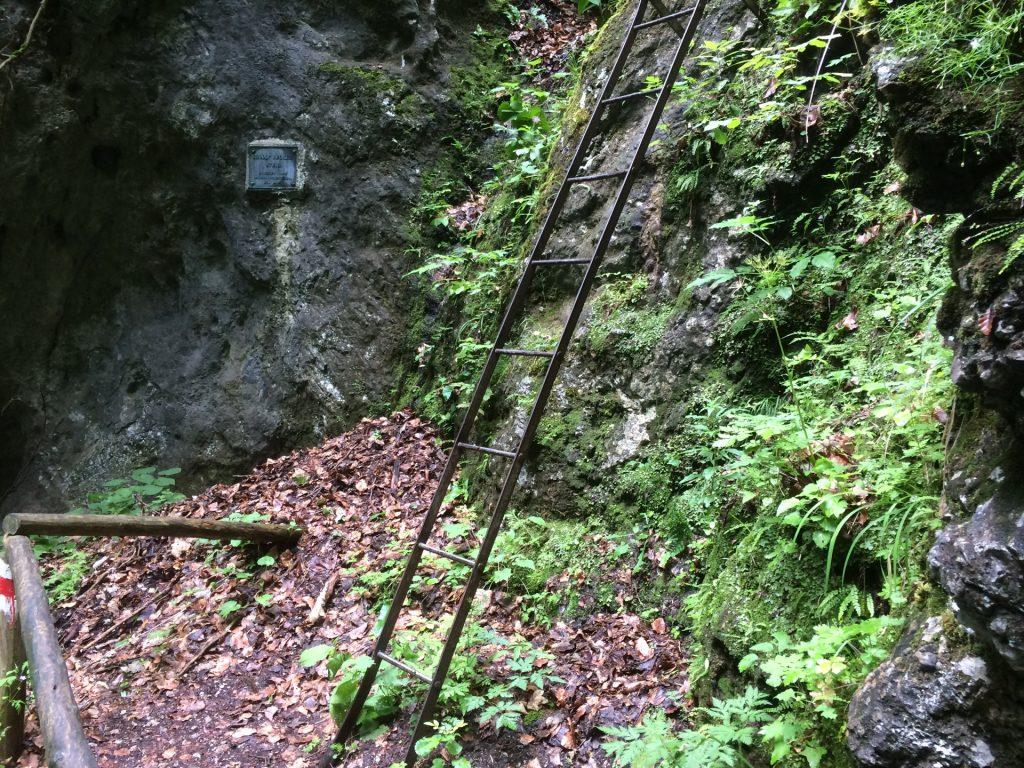 First iron ladder of the Rudolf Decker Steig
