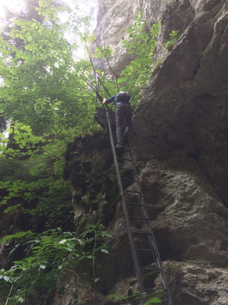 Rene decides to bypass the long ladder by taking the shorter ladder