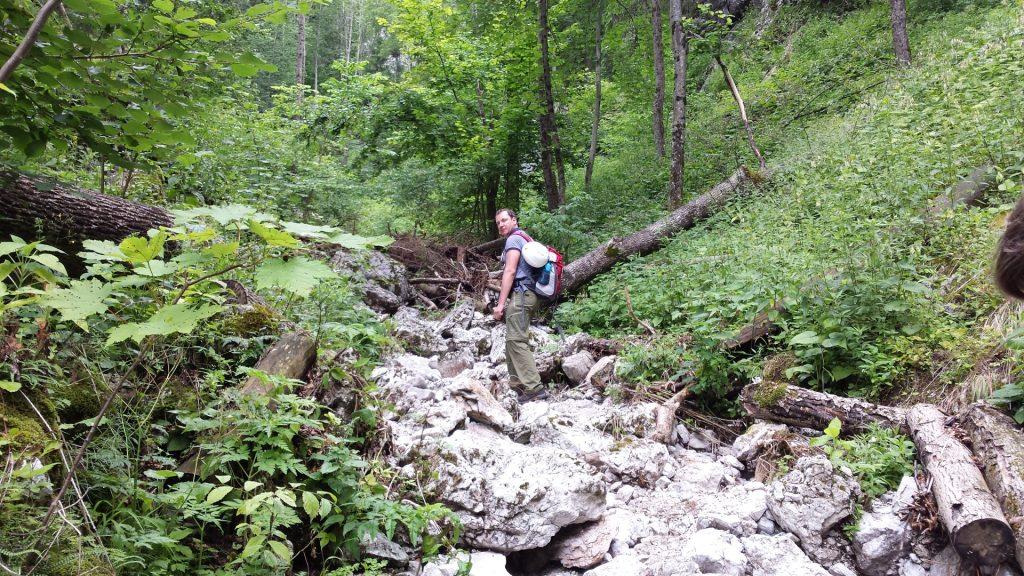 Herbert walking in the streambed