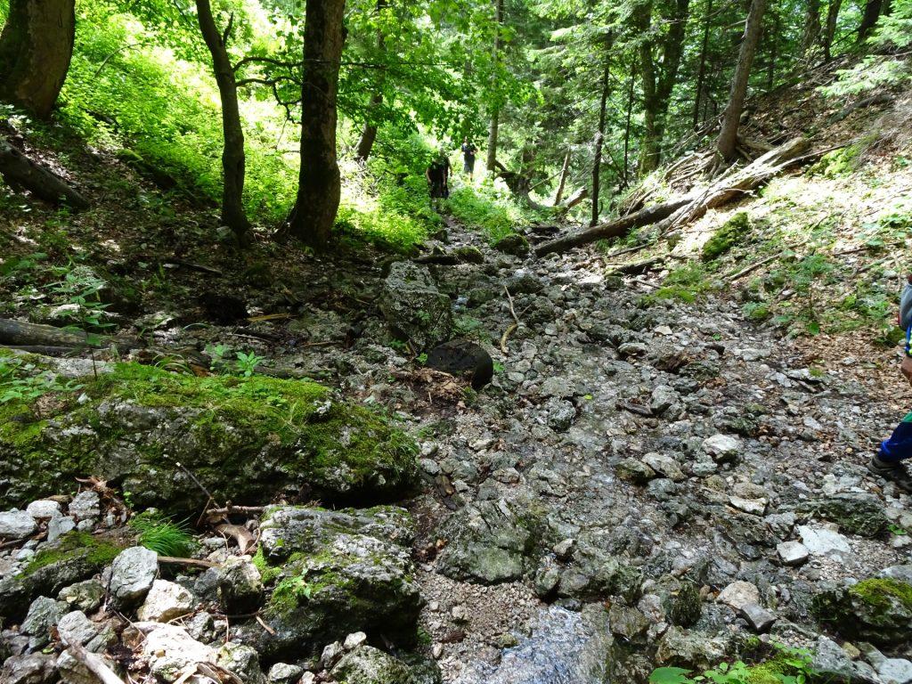 Weichtalklamm trail