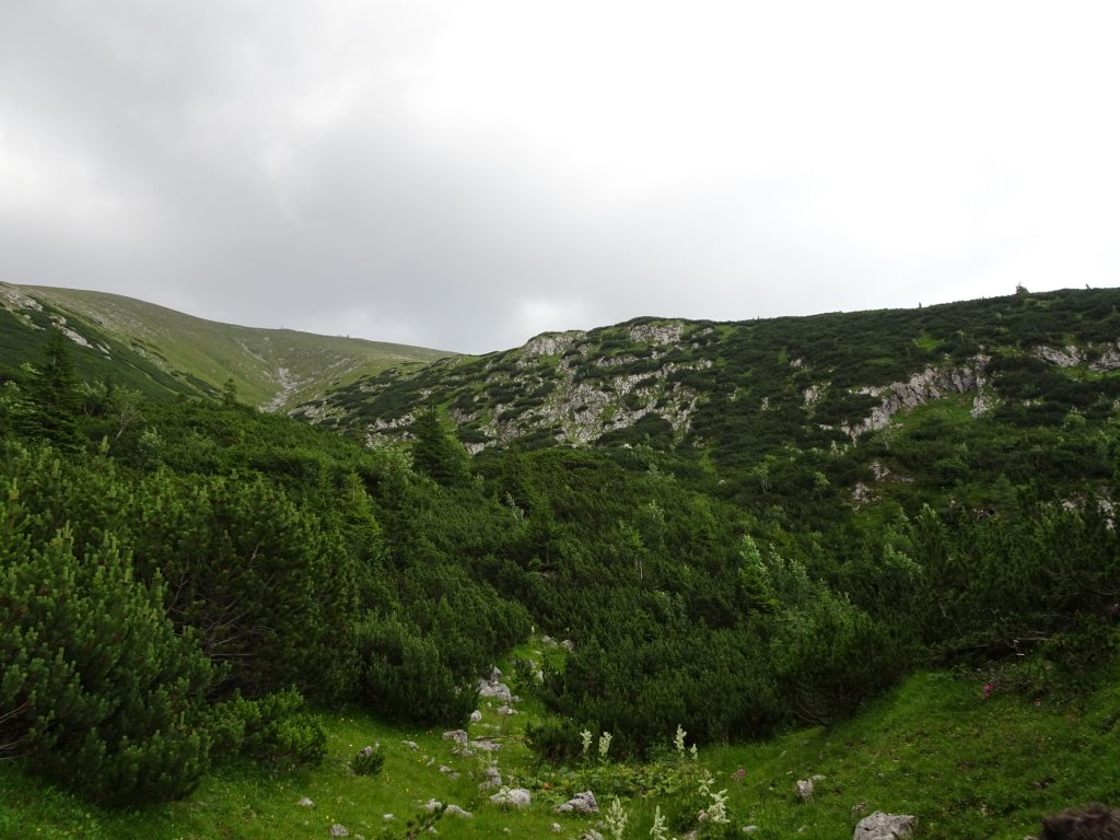 View back from Wurzengraben