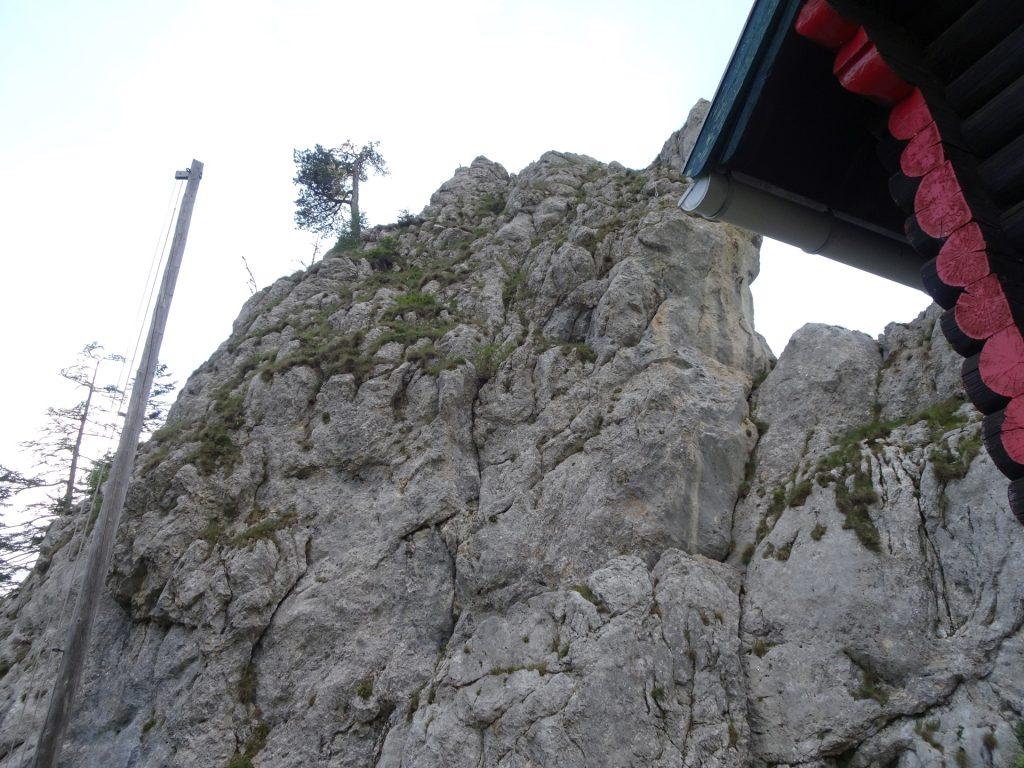 Back at the Kienthalerhütte