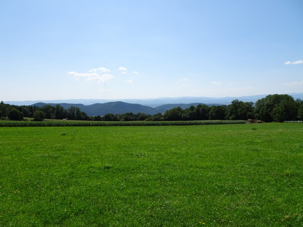 Walking along at the bottom of the Hohe Wand