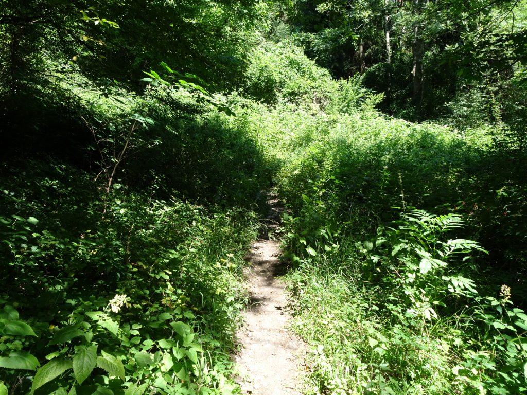 The hard to find trail of Hanslsteig