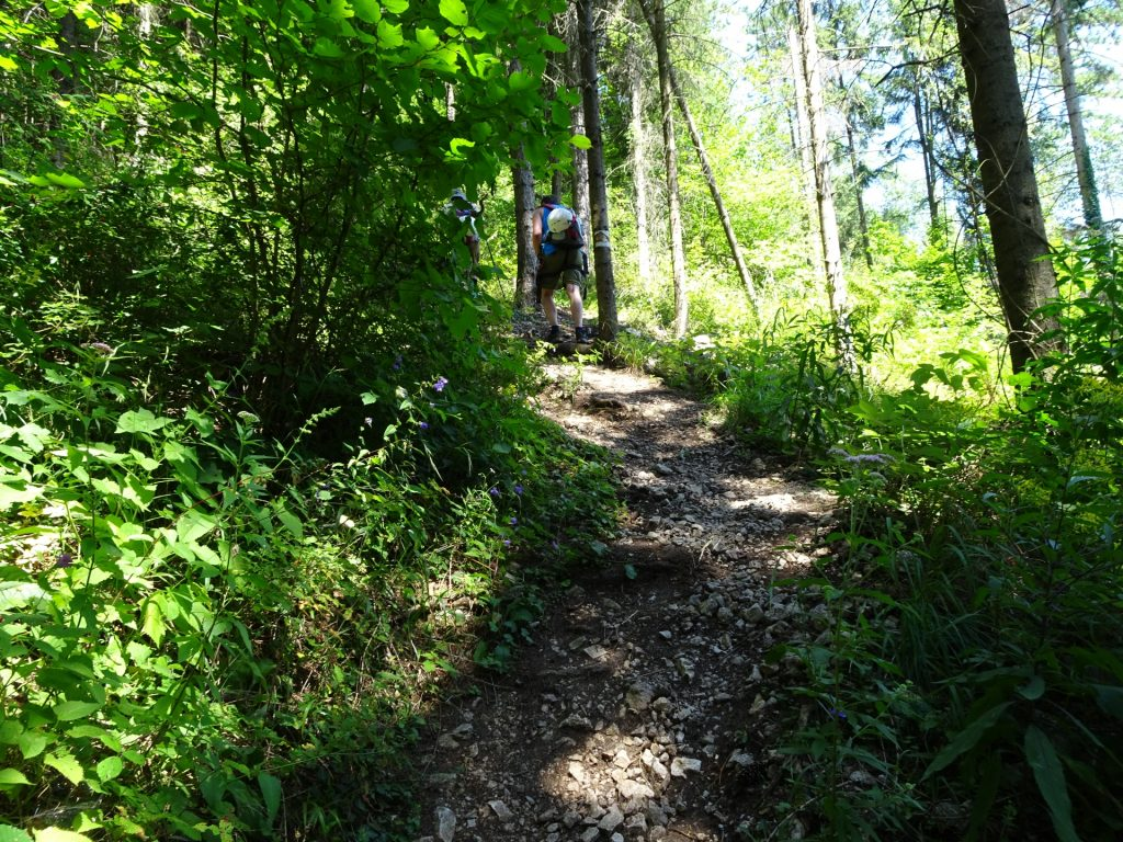 The trail is getting steeper