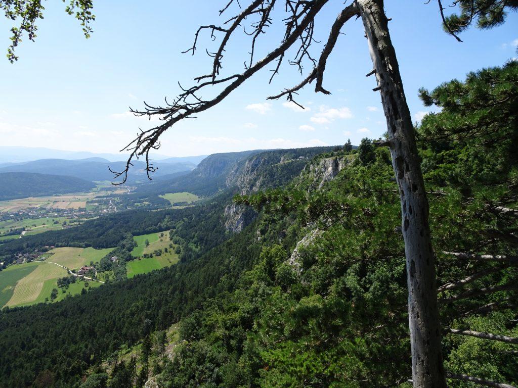 View from Hanslsteig