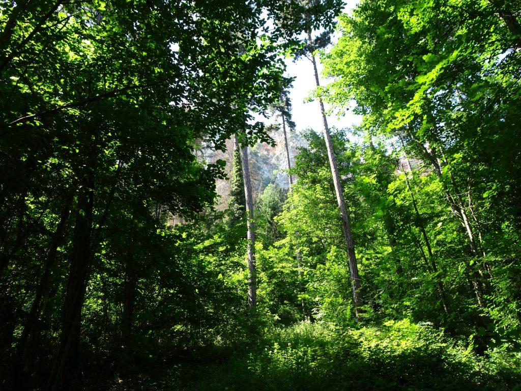 Hiking towards Völlerin