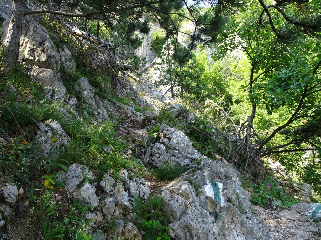 Völlerin-Steig (follow the white-green-white trail)