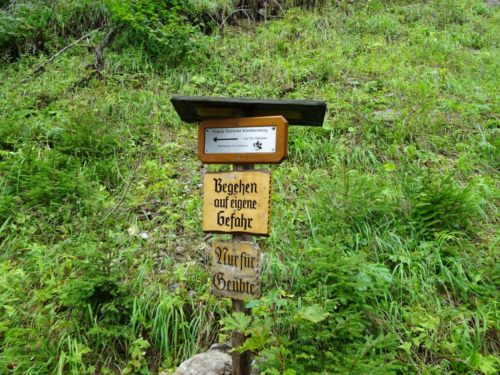 Signpost showing the direction