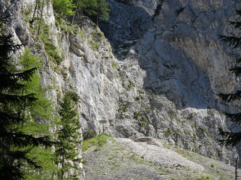 Trail towards Wildfährte