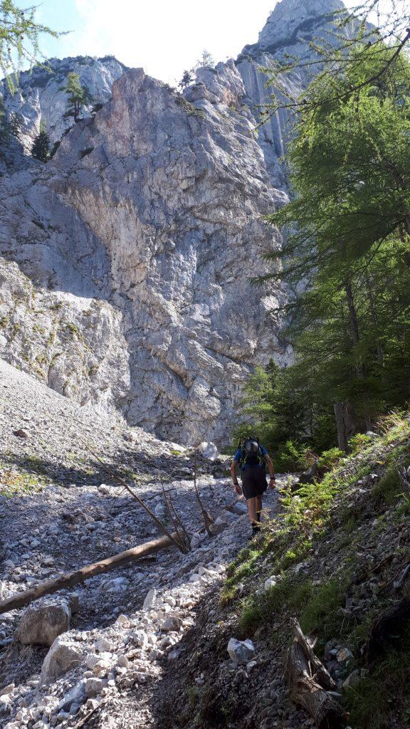 Stefan on the trail
