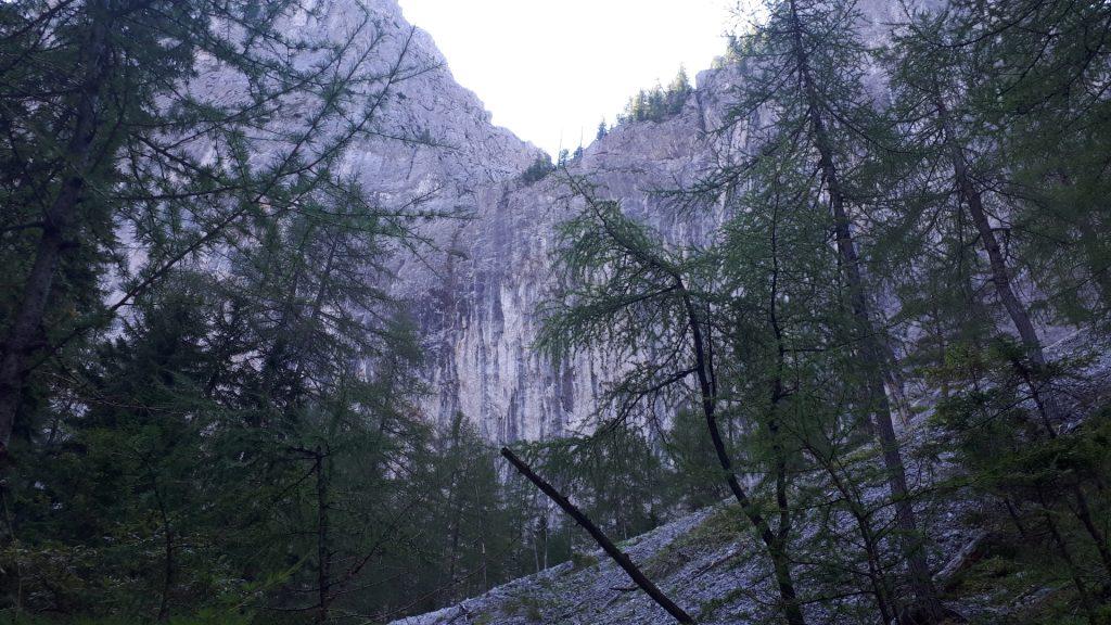 View from Wildfährte