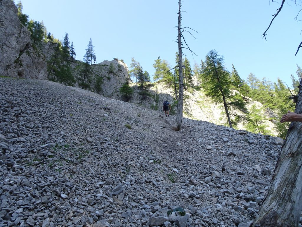 Hiking up the scree slope