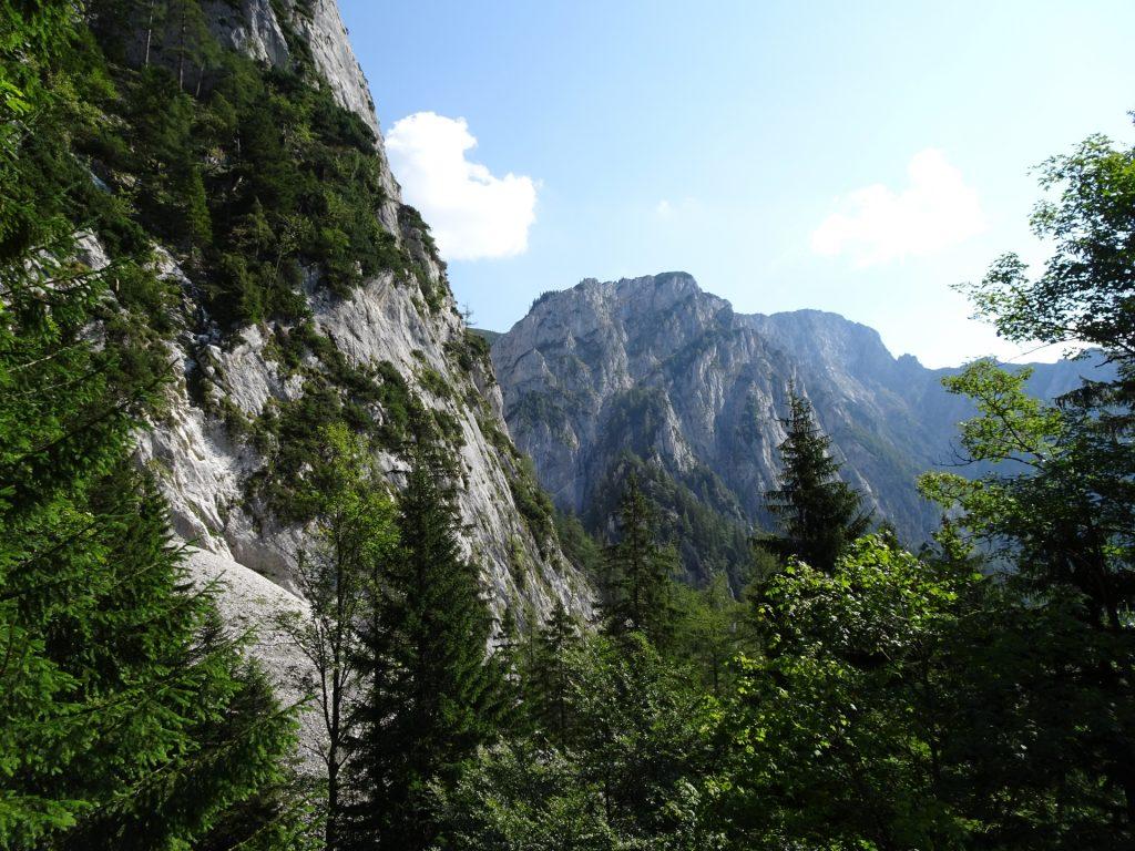 View from Kaisersteig