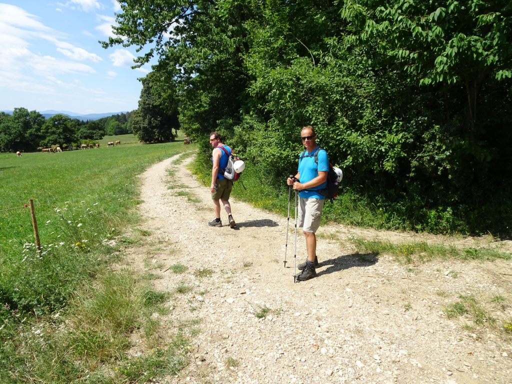 Hannes and Werner on the trail towards Hanslsteig