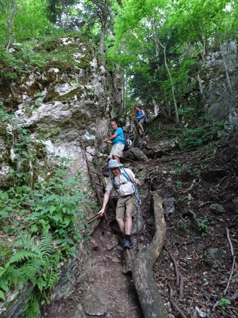 Descending via Drobilsteig