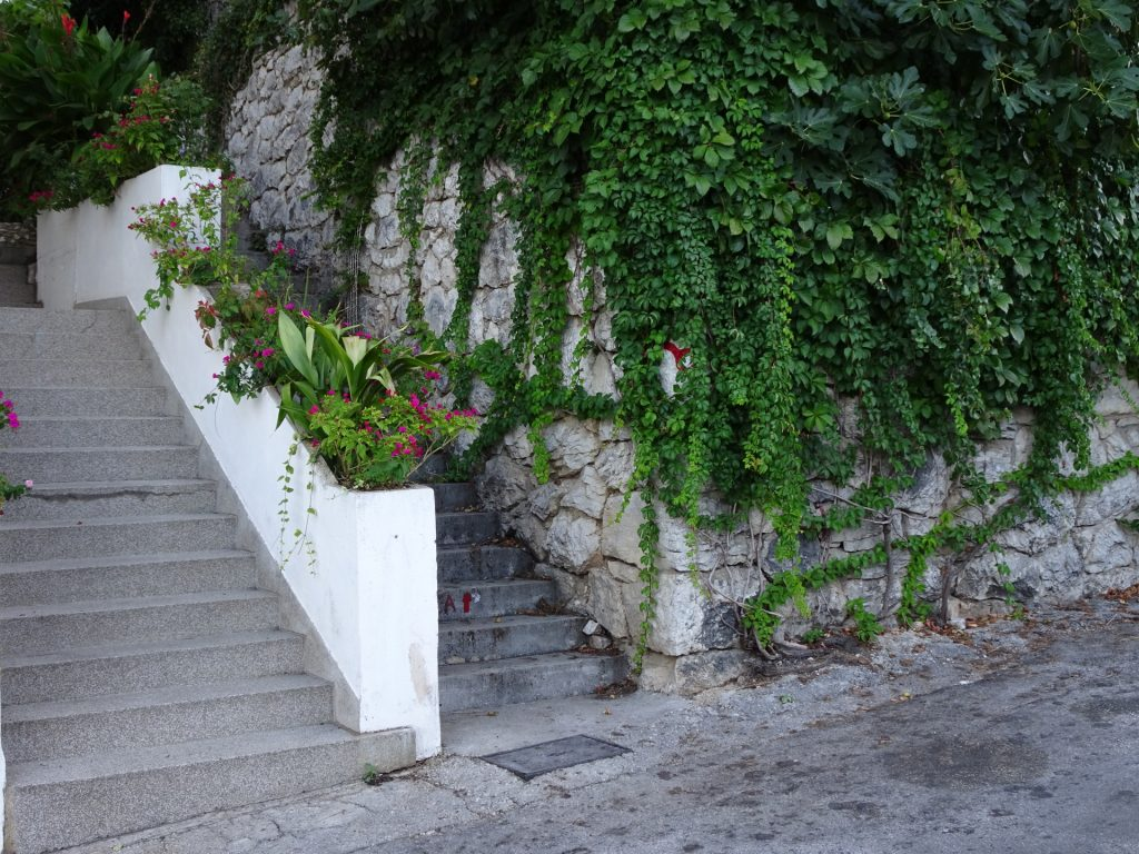 Follow the 2nd stairs (overgrown marking)
