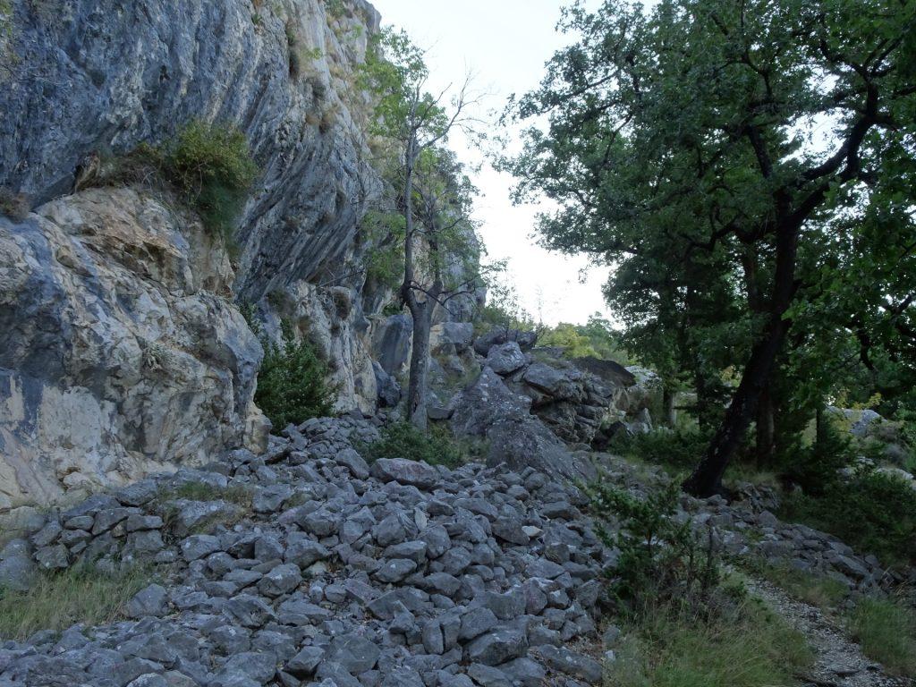Trail towards Borak