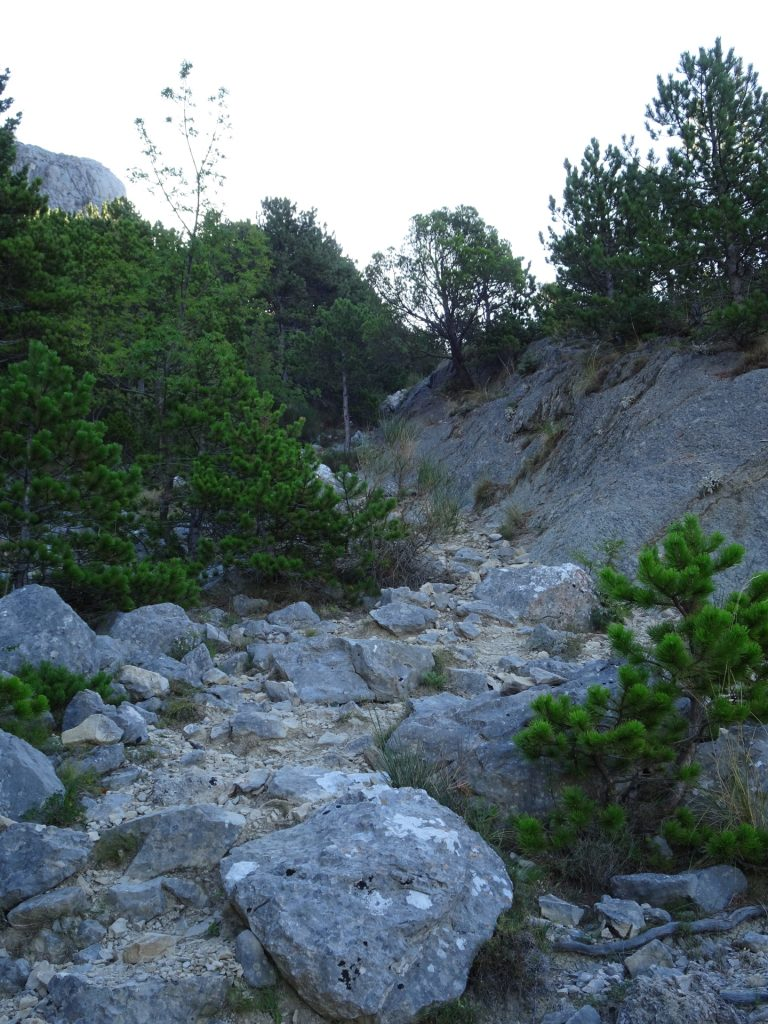 Trail towards Kula