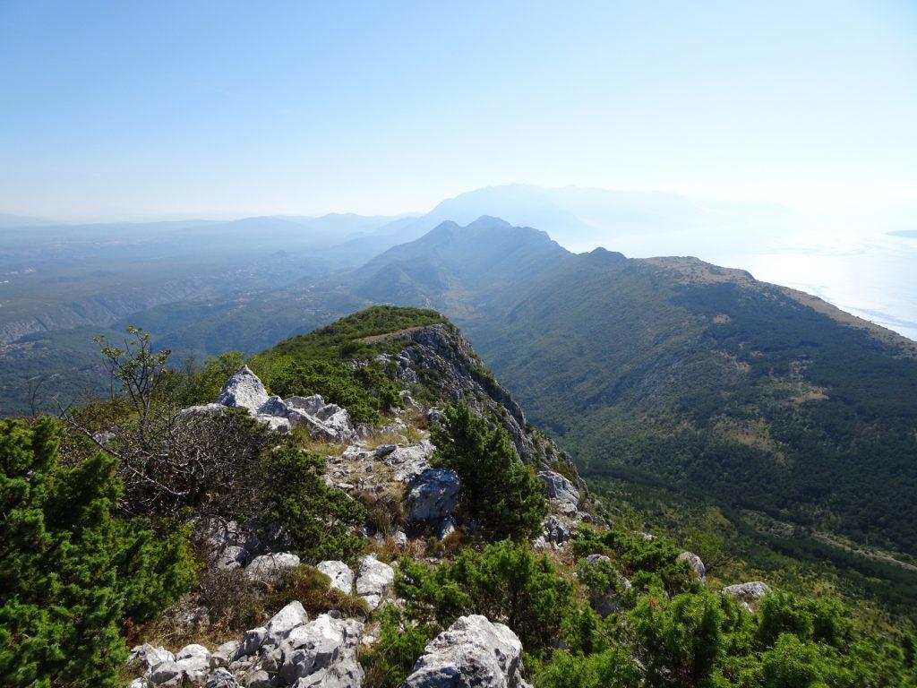 View from Kula