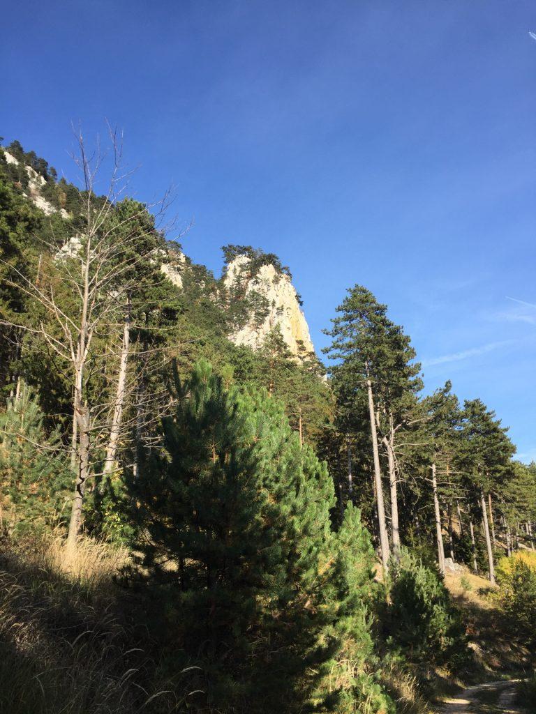 Grafenbergturm