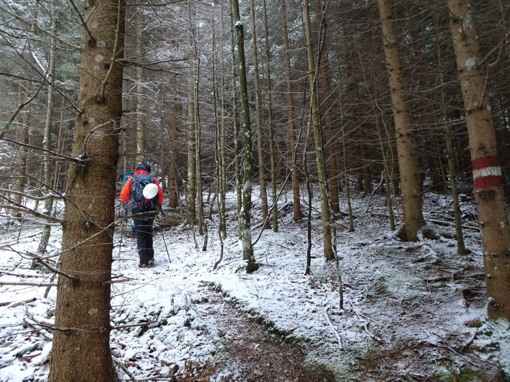 Trail towards Hoyosteig