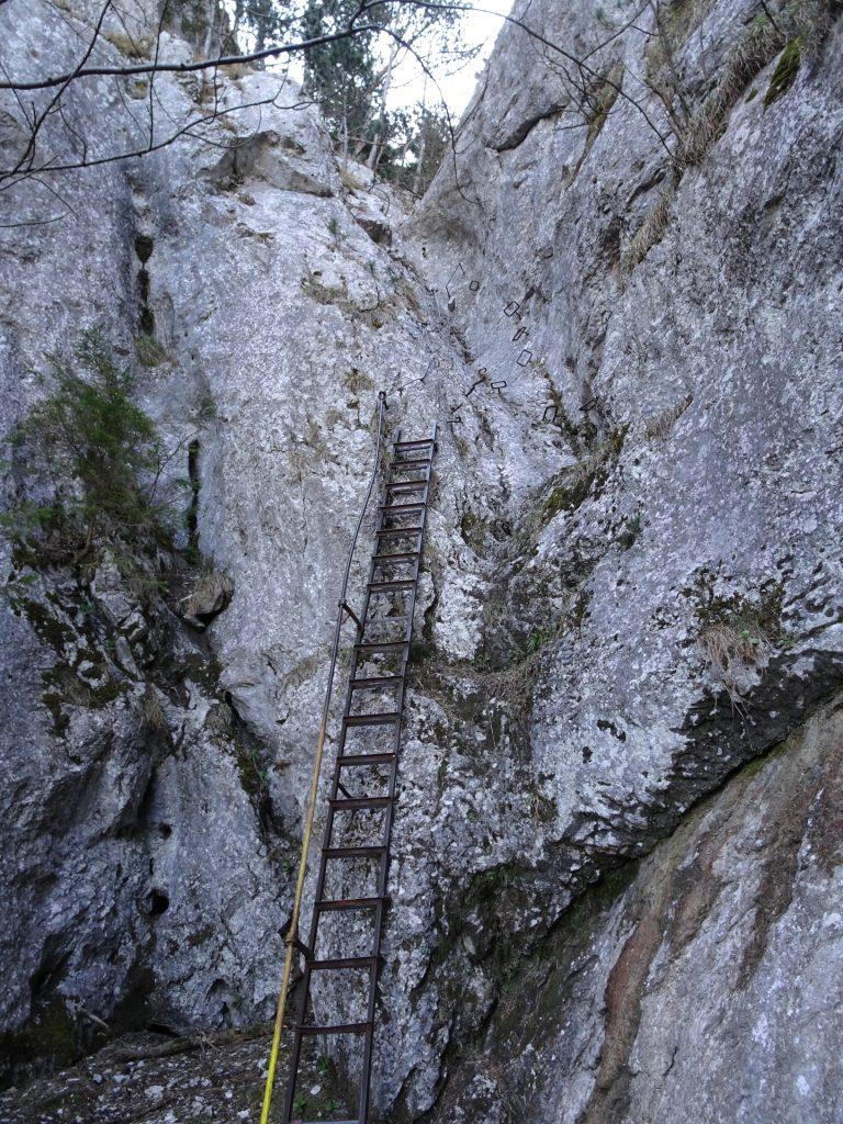 Iron Ladder followed by iron rungs