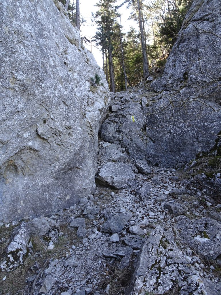 A bit of (easy) climbing