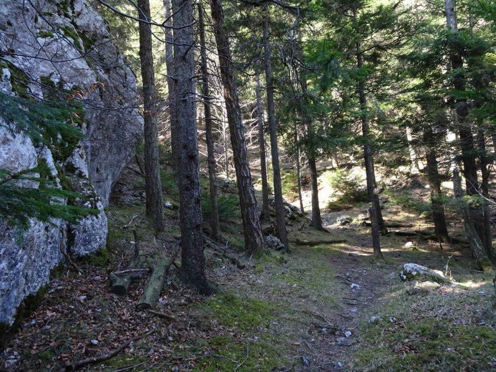 "Hiking trail of the ""Naturfreundesteig"" (Kleine Klause)"