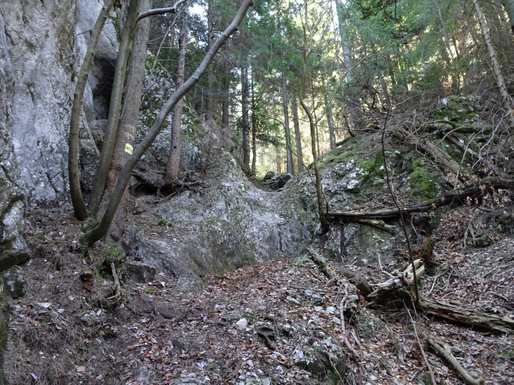 """Hiking in the """"Naturfreundesteig"""" (Kleine Klause)"""