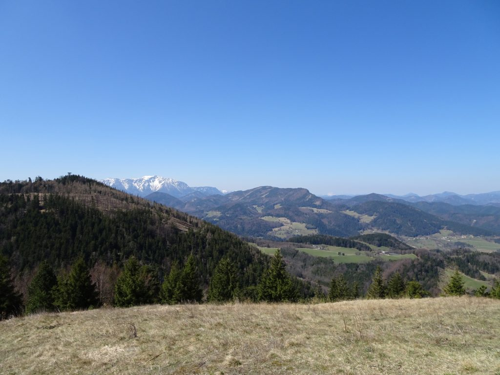 View from Waldeggerhaus towards Schneeberg