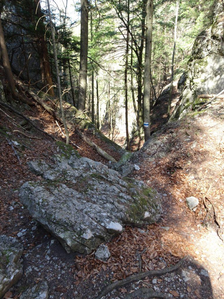 Towards Waldeggersteig