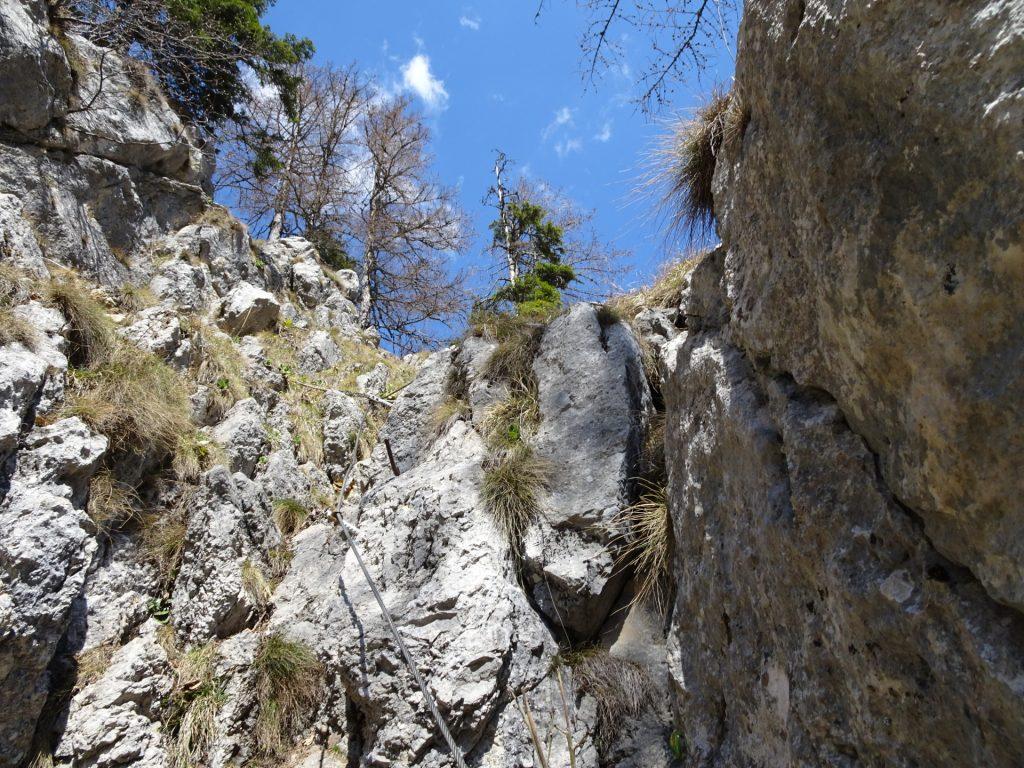 Climbing up the Hoyosteig