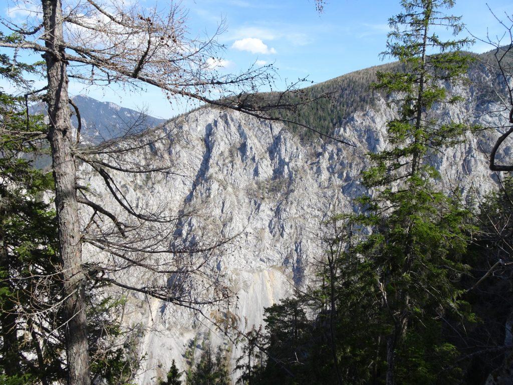 View from Rudolfsteig