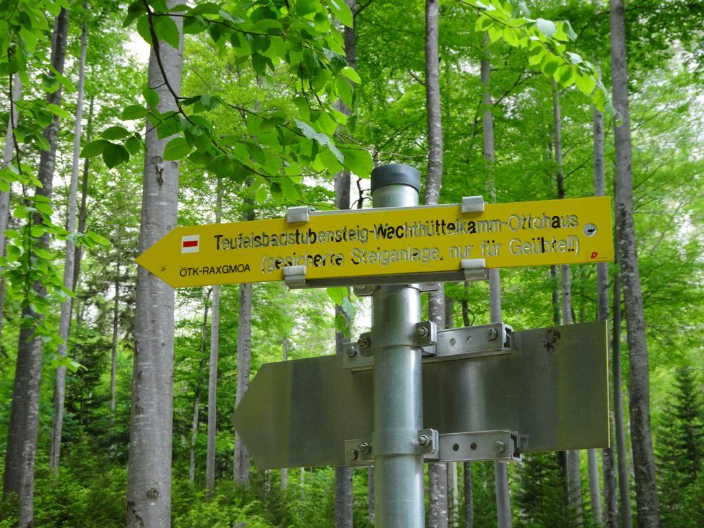 """Signpost towards """"Teufelsbadstubensteig"""" (turn left)"""