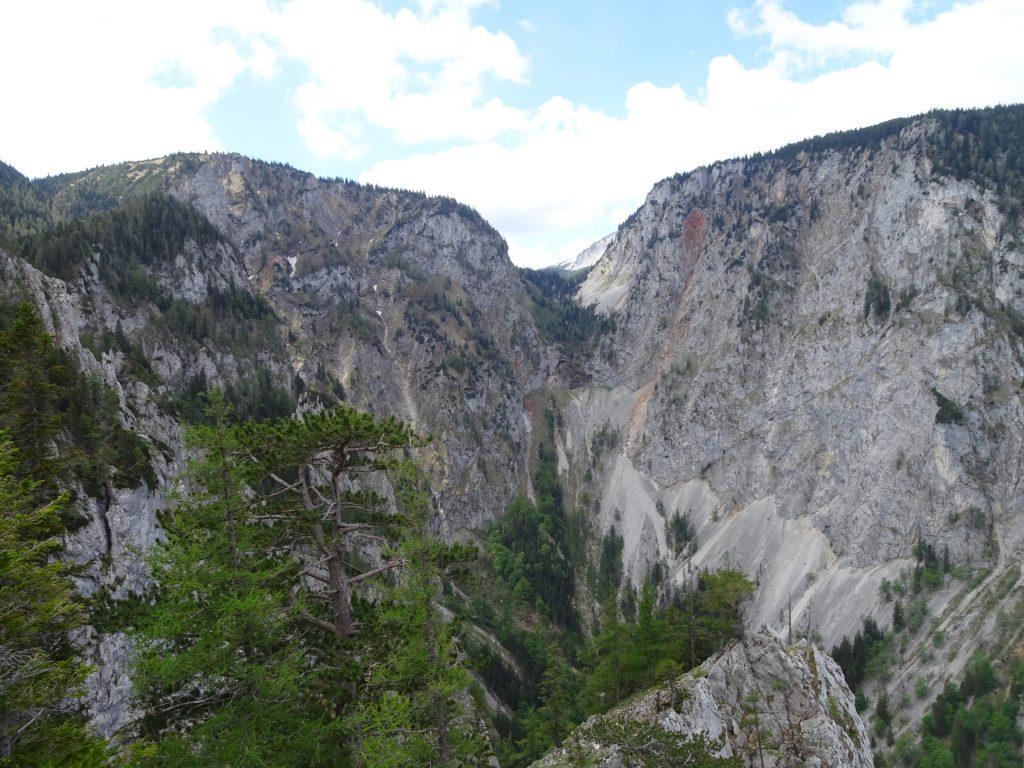 """View towards """"Gaislochsteig"""""""