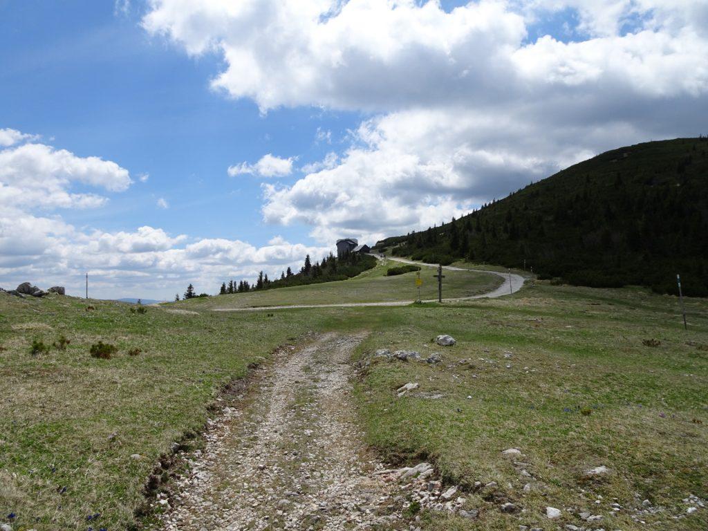 """Trail towards """"Ottohaus"""""""