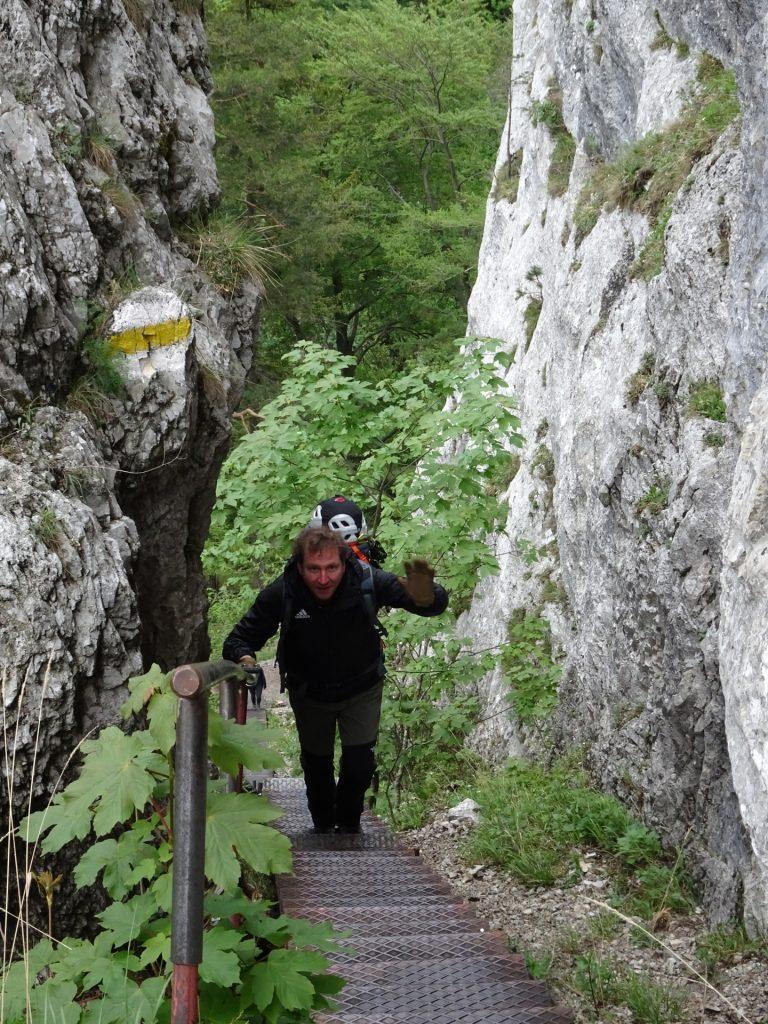 Hannes hiking up the Schönbrunnerstiege
