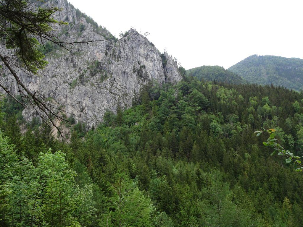 View from Schönbrunnerstiege