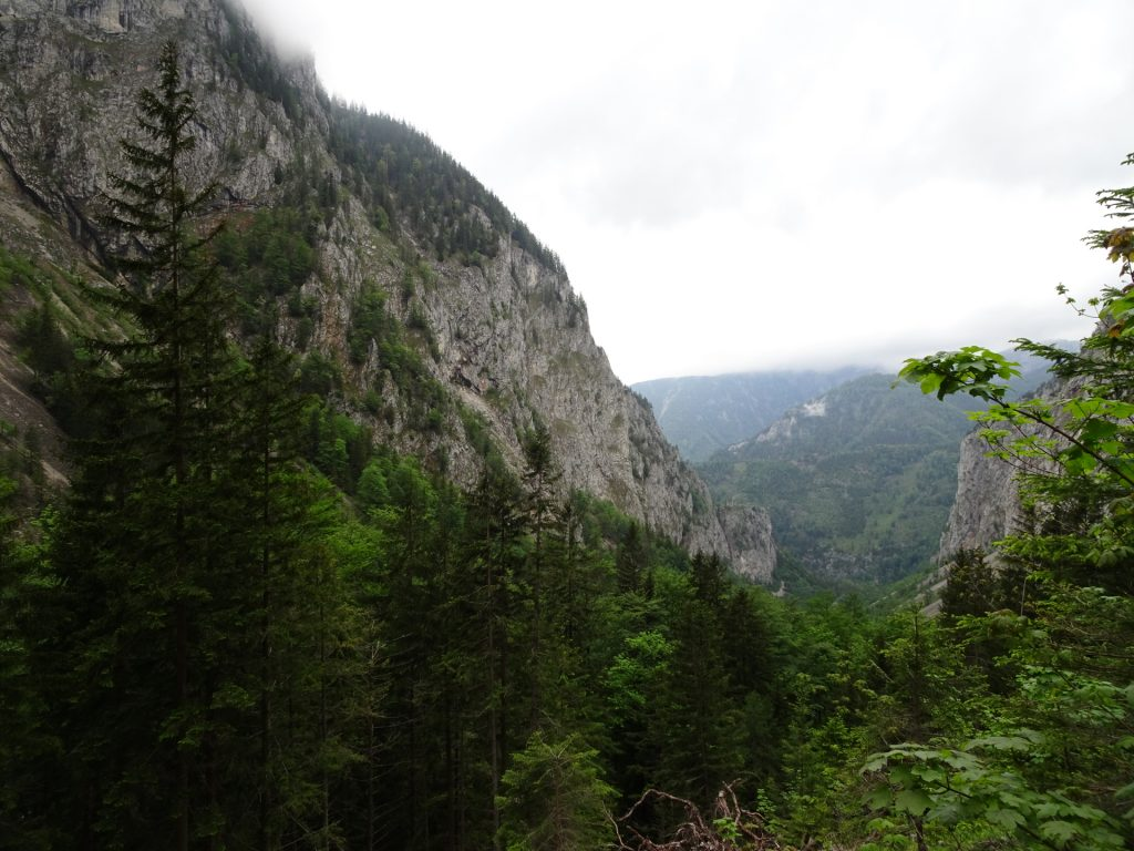 View back to Höllental