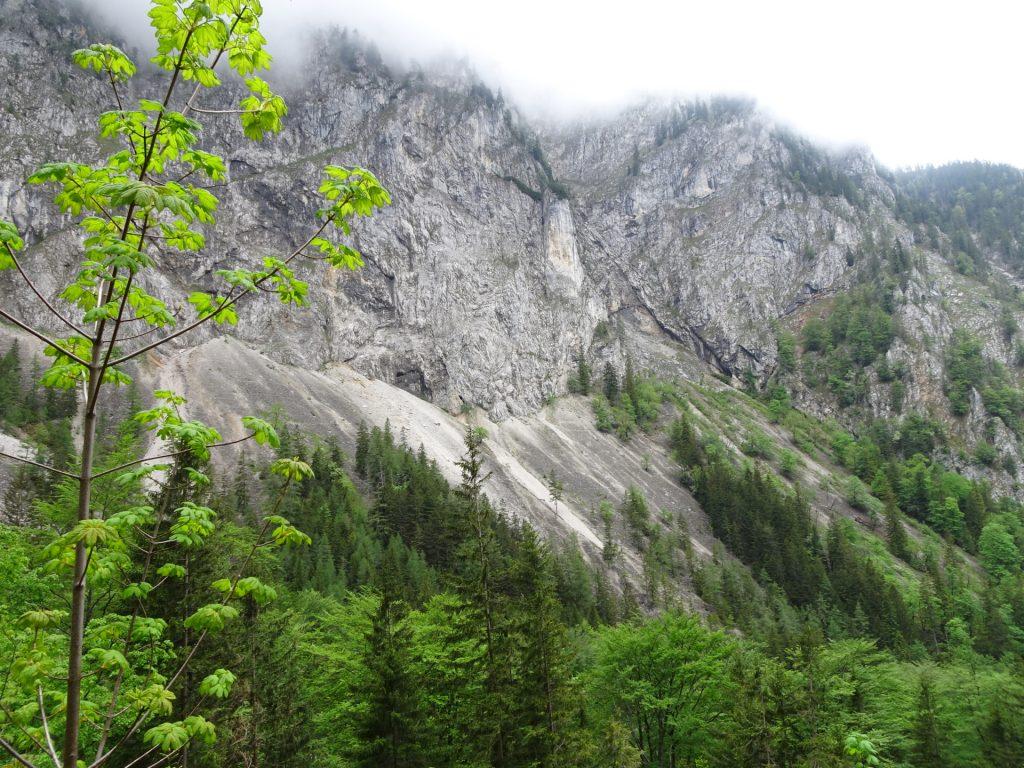 View towards Hoyosteig